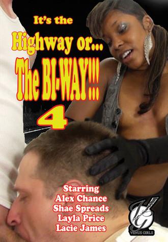 It's The Highway Or The Bi-Way 4