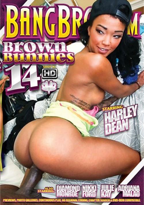 Brown Bunnies #14