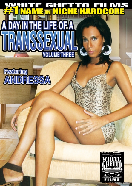 A Day In The Life Of A Transsexual #03