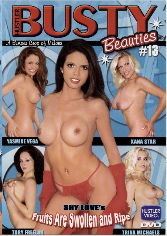 Busty Beauties #13 DVD