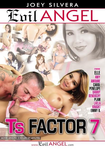 TS Factor #07