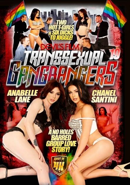 Transsexual Gangbangers #19 DVD