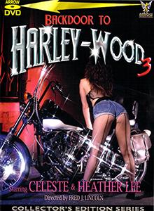 Backdoor To Harley-Wood III