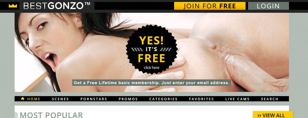 www.bestgonzo.com