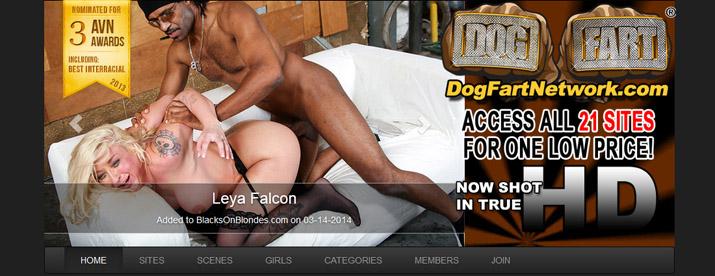 www.dogfartnetwork.com