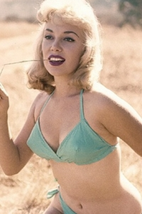 Sally Todd