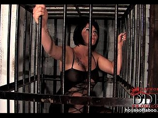 Pissing in cage