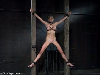 Princess Donna World famous Mistress, helpless on