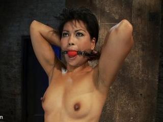Asian MILF with huge nipples is made to cum hardpu