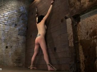 Brutal flogging and caning. Our sexy marketing gir