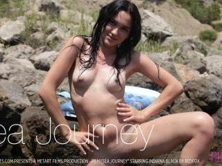 Sea Journey