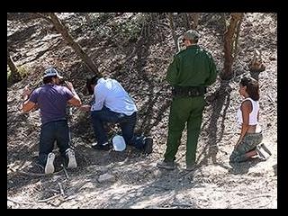 Border Patrol Sex - Abella Danger 1