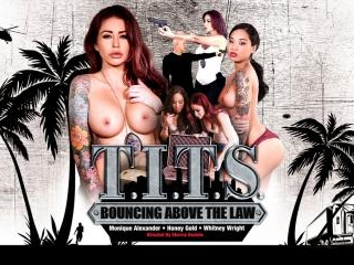 T.I.T.S: Bouncing Above the Law