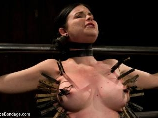 Curvy broad suffers for orgasms then strung up by