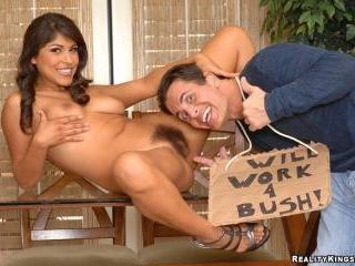 Bush Is Back