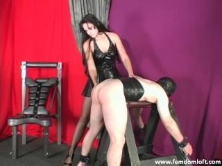 Spanked and Scratched