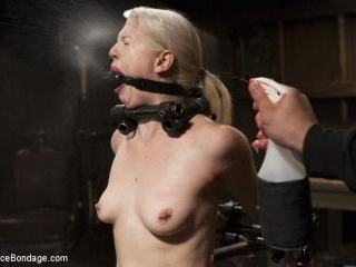 Young, Blond, All Natural Pain Slut gets a Full Do