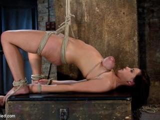 Girl next door suffersCategory 5 Suspension Extrem