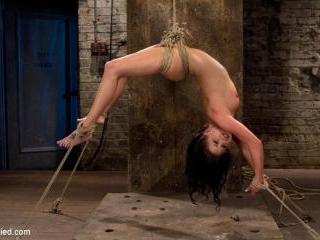 Sexy girl next door is bound & suspended, stretche