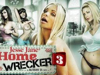 Home Wrecker 3