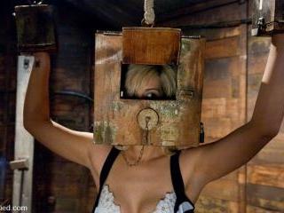 Boxed up and carted around... Tara Lynn Fox