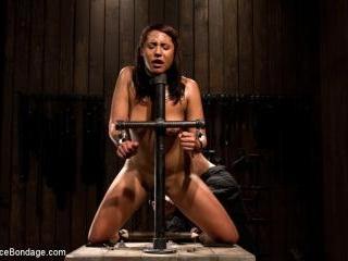 Amateur girl seeks hard bondage