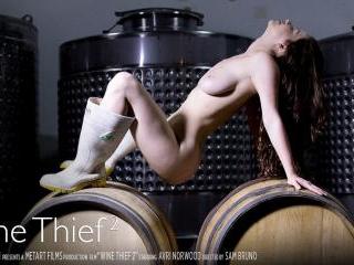 Wine Thief 2