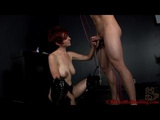 Up or Down cock torture