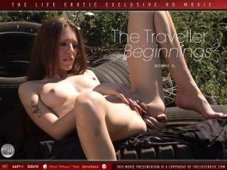 The Traveller - Beginnings 2