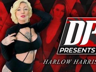 DP Presents: Harlow Harrison
