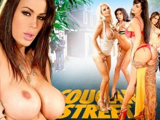 Cougar Street